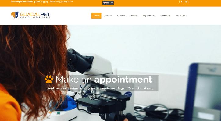Marbella Website Design